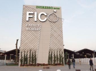 FICO_ingresso